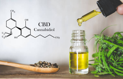 CBD Myths and Reality